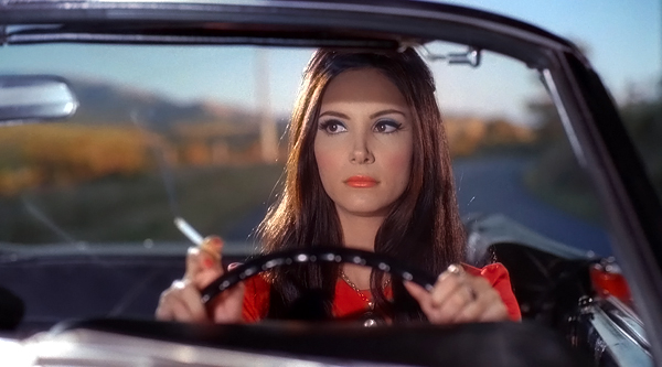 MOONLIGHT MADNESS: The Love Witch