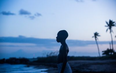 Queergestreift: Moonlight