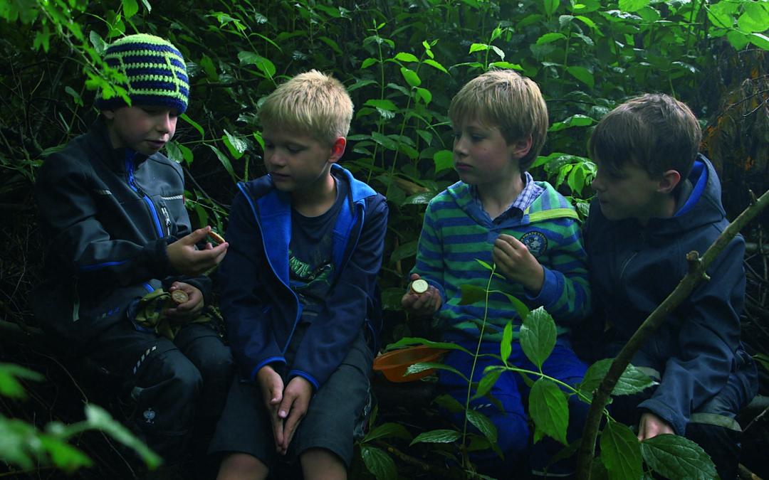 SONDERVERANSTALTUNG: Von Bananenbäumen träumen