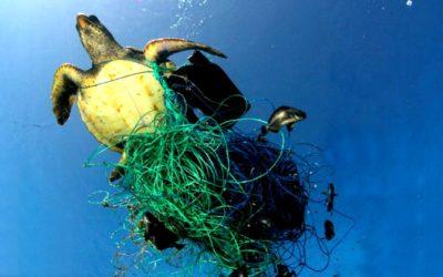 KOOPERATION: A Plastic Ocean